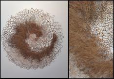 Entrelacs, fibres végétales. Tisser, nouer, tresser, tricoter, entrelacer, crocheter. Les formes ovoïdes, cocons ou chrysalides, évoquent quelque naissance en gestation.