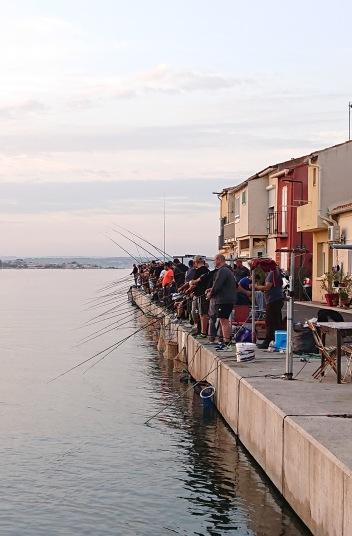 Pêche à la dorade